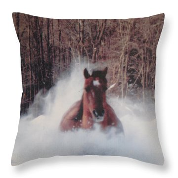 Sunny Running For The Barn. Throw Pillow by Jeffrey Koss