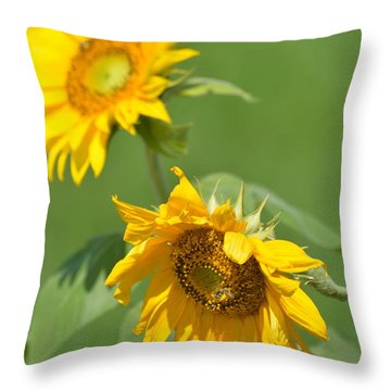 Sunny Side Up 1 Throw Pillow by Teresa Tilley