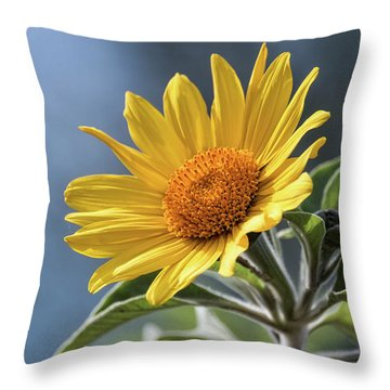 Throw Pillow featuring the photograph Sunny Side Up  by Saija Lehtonen