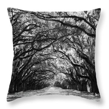 Sunny Southern Day - Black And White Throw Pillow
