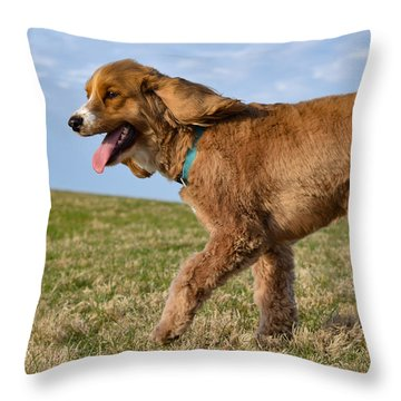 Sunny Stroll Throw Pillow