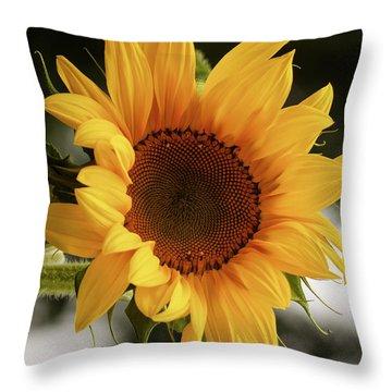 Throw Pillow featuring the photograph Sunny Sunflower by Jordan Blackstone