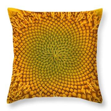 Sunny Swirl Throw Pillow