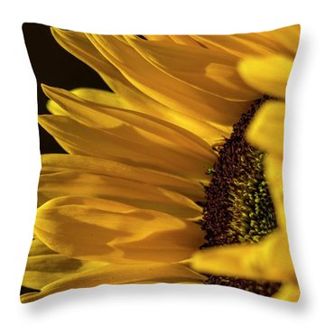 Throw Pillow featuring the photograph Sunny Too By Mike-hope by Michael Hope