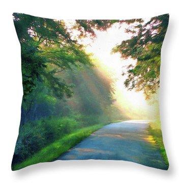 Sunny Trail Throw Pillow by Cedric Hampton