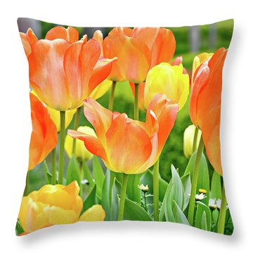 Throw Pillow featuring the photograph Sunny Tulips by David Lawson