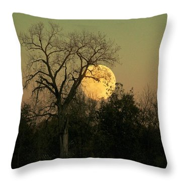 Throw Pillow featuring the photograph November Supermoon  by Chris Berry