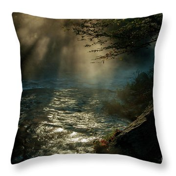 Sunrays At Fork River Throw Pillow by Iris Greenwell