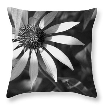 Sunrays Throw Pillow by David Dunham