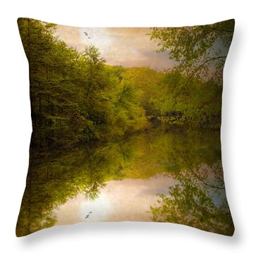 Sunrise 2 Throw Pillow by Jessica Jenney