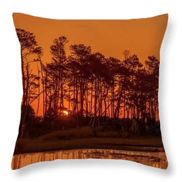 Sunrise Along A Tree Line Throw Pillow