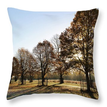 Sunrise And Long Shadows Throw Pillow