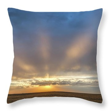 Sunrise And Wheat 03 Throw Pillow