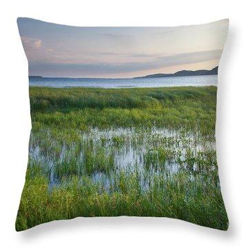 Sunrise At Sandbar  Throw Pillow by Susan Cole Kelly
