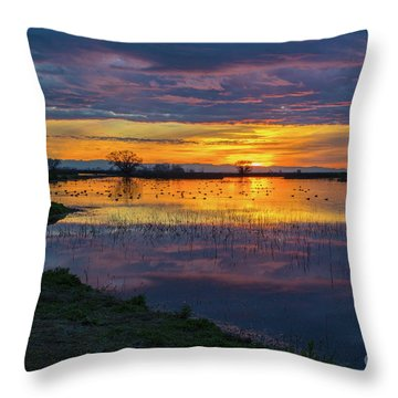 Sunrise At The Merced National Wildlife Refuge Throw Pillow
