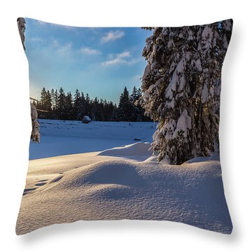 sunrise at the Oderteich, Harz Throw Pillow