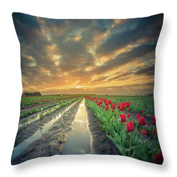 Throw Pillow featuring the photograph Sunrise At Tulip Filed After A Storm by William Lee