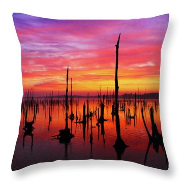 Sunrise Awaits Throw Pillow