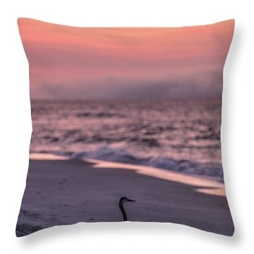 Throw Pillow featuring the photograph Sunrise Beach And Bird by John McGraw