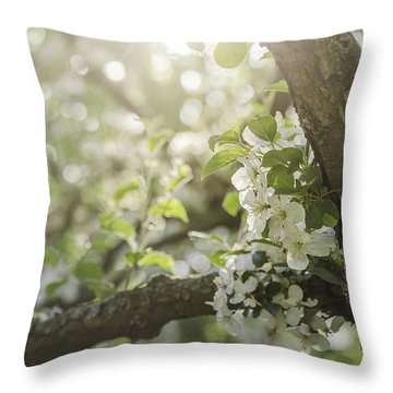Sunrise Blossoms Throw Pillow