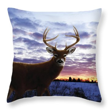 Sunrise Buck Throw Pillow by Barbara Hymer