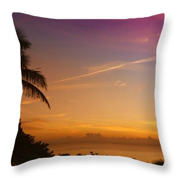 Throw Pillow featuring the photograph Sunrise Color by Don Durfee