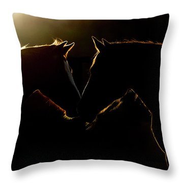 Sunrise Companions Throw Pillow