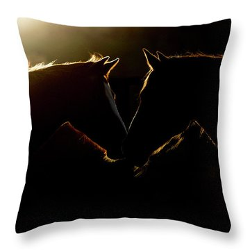 Sunrise Companions Throw Pillow