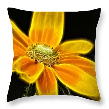 Sunrise Daisy Throw Pillow by Cameron Wood