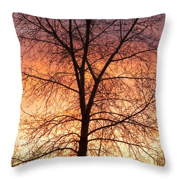 Sunrise December 16th 2010 Throw Pillow by James BO  Insogna