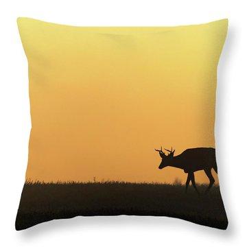 Sunrise Deer Throw Pillow