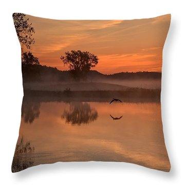 Sunrise Goose Throw Pillow