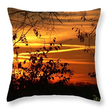Throw Pillow featuring the photograph Sunrise In Tennessee by EricaMaxine  Price