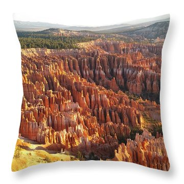 Sunrise In The Canyon Throw Pillow