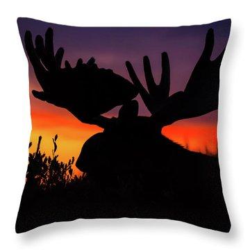 Sunrise King Throw Pillow