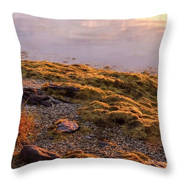 Throw Pillow featuring the photograph Sunrise Light by Tom Singleton