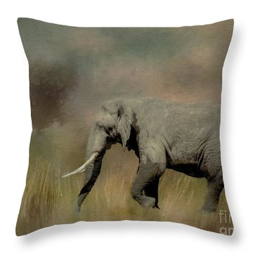 Sunrise On The Savannah Throw Pillow