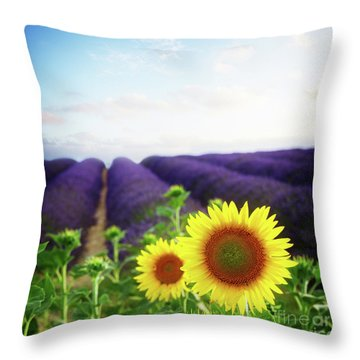 Sunrise Over Sunflower And Lavender Field Throw Pillow
