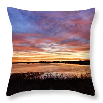 Throw Pillow featuring the photograph Sunrise Over The Marsh by Larry Ricker