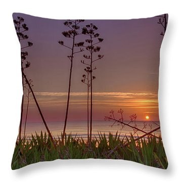 Sunrise Palm Blooms Throw Pillow