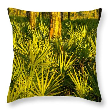 Sunrise Saw Palmettos Throw Pillow