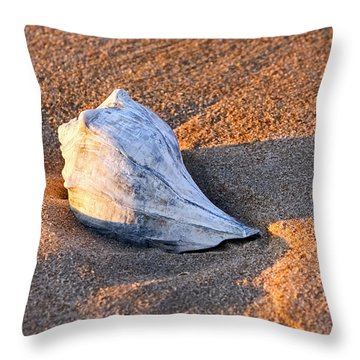 Sunrise Seashell Throw Pillow by Allan Levin
