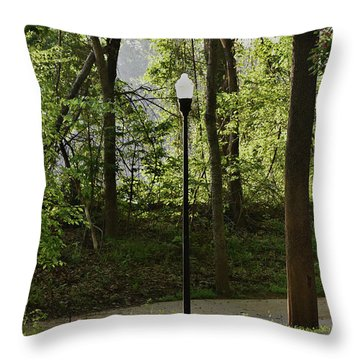 Throw Pillow featuring the photograph Sunrise Service by Skip Willits