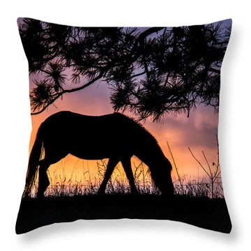 Sunrise Silhouette Throw Pillow