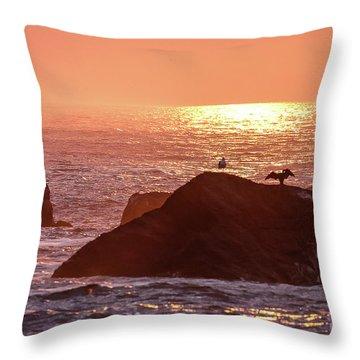 Sunrise, South Shore Throw Pillow