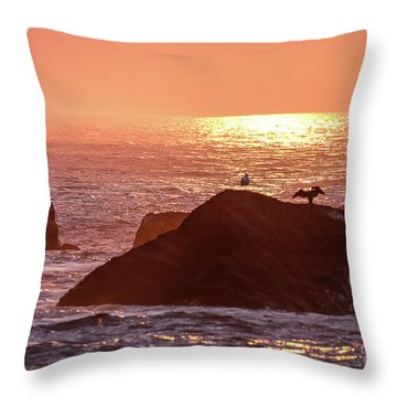 Sunrise, South Shore Throw Pillow