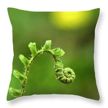 Sunrise Spiral Fern Throw Pillow