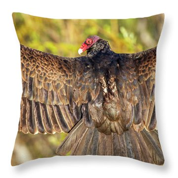 Sunrise Stretch  Throw Pillow
