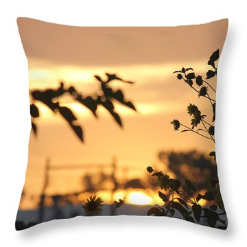 Sunrise Sunflowers Throw Pillow