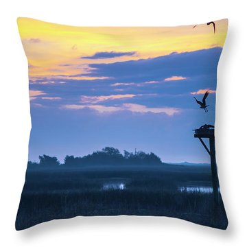Throw Pillow featuring the photograph Sunrise Sunset Image Art - Good Friday by Jo Ann Tomaselli